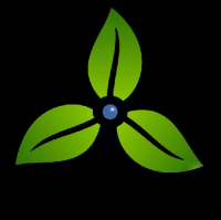 Majoris Group (Pvt) Ltd